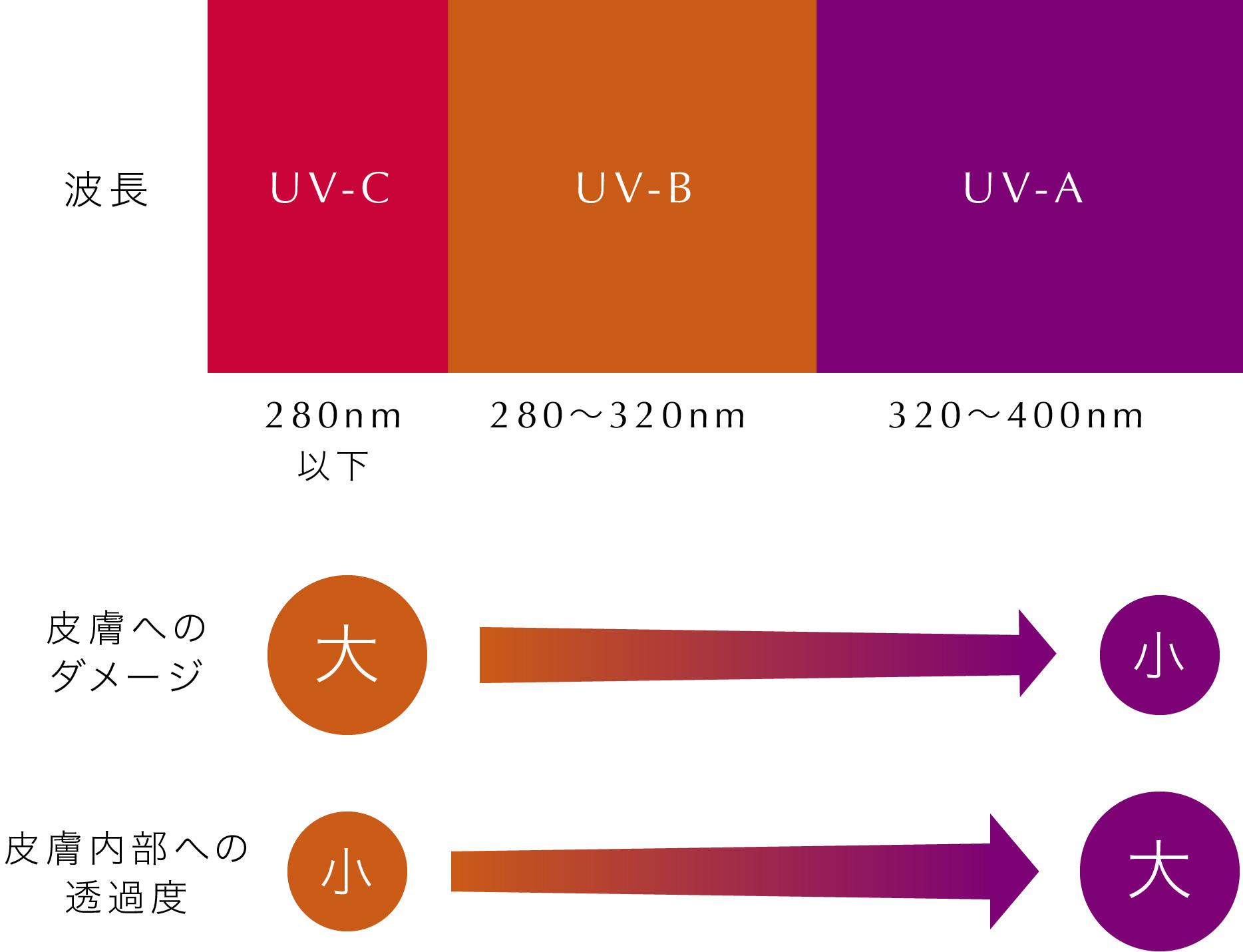 紫外線波長の説明画像